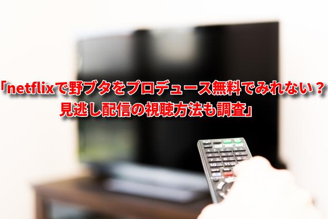 netflixで野ブタをプロデュース無料動画ない?見逃し配信の視聴方法も調査